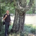 Bouleau verruqueux de Chamonix