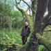Cerisier de Sainte-Lucie à Chens-sur-Léman