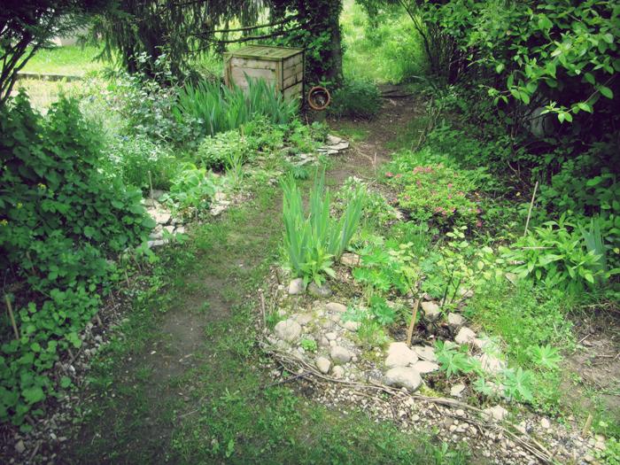 Au jardin meristemes for Au jardin d enfants