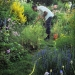 arrosage jardin - juin 2012